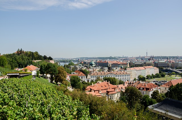 pohled na panorama Prahy.jpg